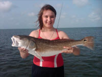 texas bay fishing