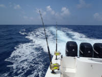 port aransas offshore fishing