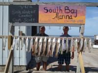 port aransas fishing trip pics
