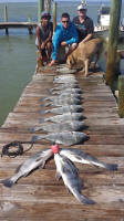 port aransas fishing pics