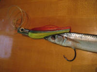 Port Aransas Fishing and Rockport Texas Fishing guide: Bay Fishing